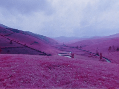 Richard Mosse: The Impossible Image  (2014)