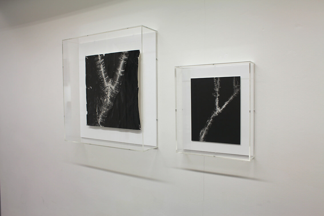 Clare Strand Rubbing Installation Shot 1 Low