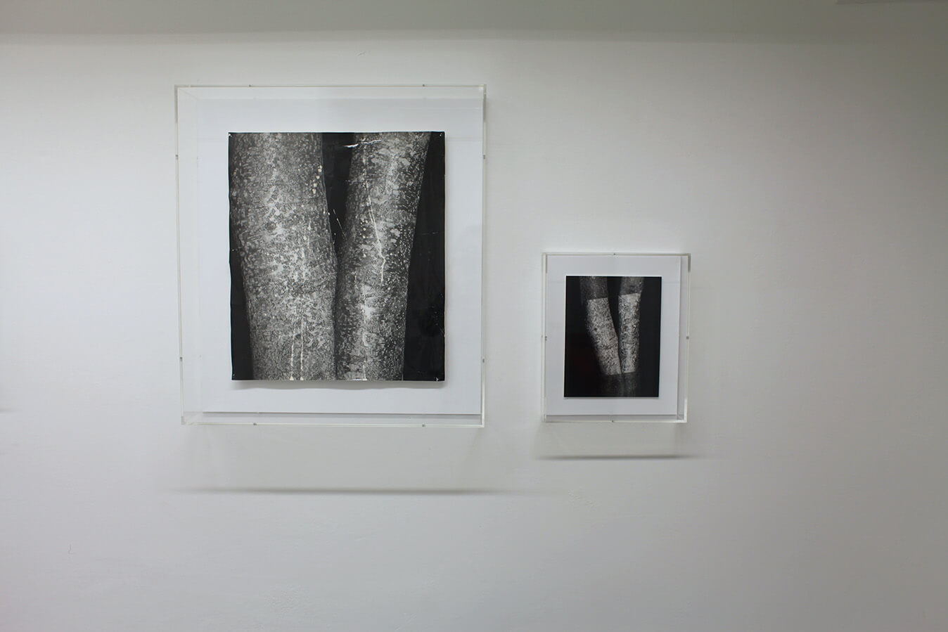 Clare Strand Rubbings Installation 2 Low